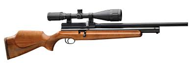 pneumatic best air rifle for the money