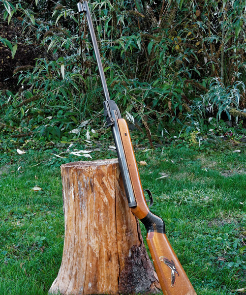 The Top 10 Best Air Rifles for Bagging Prize Trophies