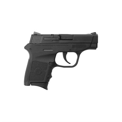 Smith & Wesson M&P Bodyguard 380 pistol